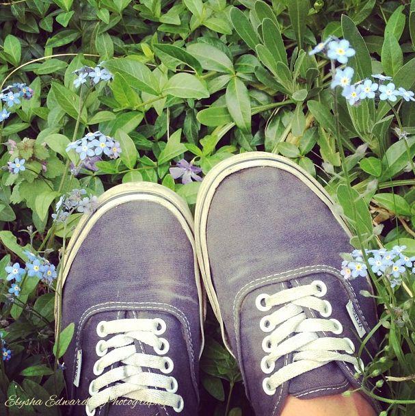#vans #shoes #nature #flowers #photography