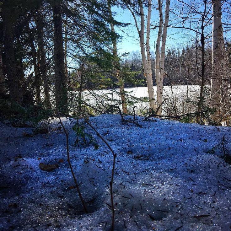 C'est le #printemps dans #lanaudiere #quebecoriginal #explorecanada #canada #country #stzenon