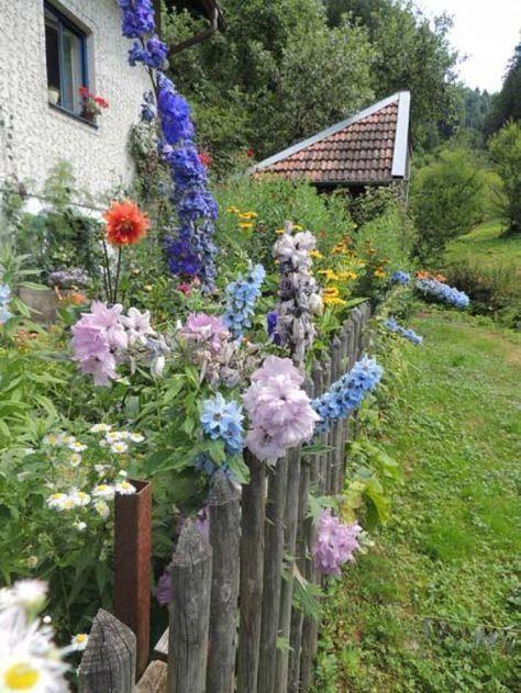 Die wichtigsten Pflanzen für den Bauerngarten#bauerngarten #den #die #für #pflanzen #wichtigsten