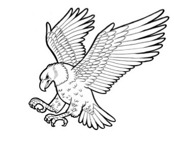 eagle in flight stencil