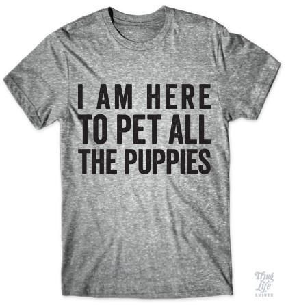 I am here to pet all the puppies!