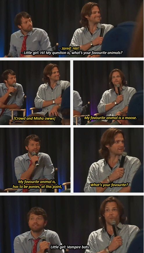 This still makes me laugh. Can we talk about how scared Mish looks. XD