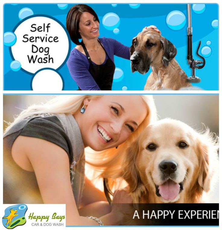 70 best dog and pet wash calgary images on pinterest unique dogdaycare and nanny service for every doggie breed let your doggie enjoy luxury solutioingenieria Choice Image