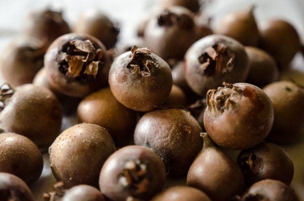 Mosmoanele  se numara printre  fructele  mai putin cultivate si consumate in Romania, iar un detaliu si mai putin cunoscut este ca sunt folosite si in multe retete de medicina naturista. Dizolvarea pietrelor la rinichi, mentinerea sanatatii...