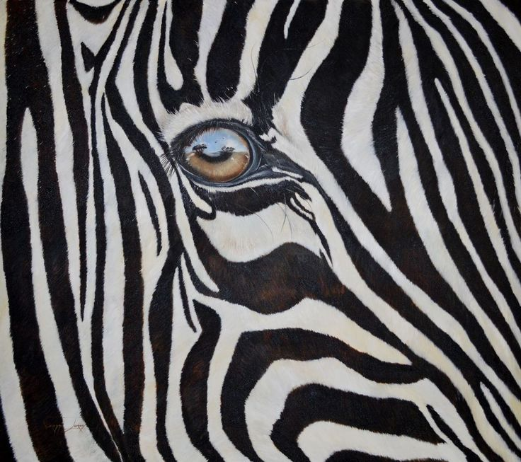 Large 1.5 x 1.7 meters, oil on canvas. Although this is a low res photo of my latest art piece, you can still zoom in to see the reflection in the Zebra's eye.