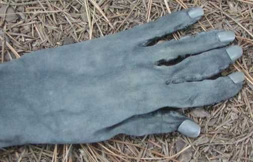 use panty hose legs to make ar gloves rather than body paint.  (also a tutorial on how to make a weeping angel costume) crafty_tardis: Beware the Weeping Angels