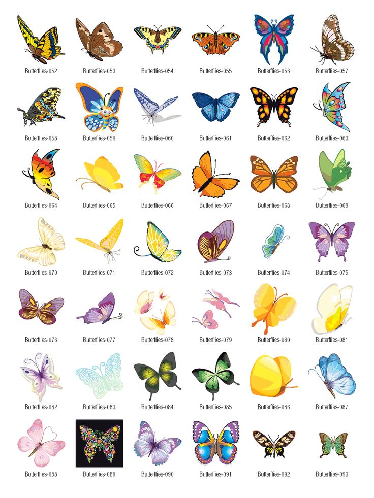 Free Graphics Vintage Roses: Butterflies Vector Clipart Free Download
