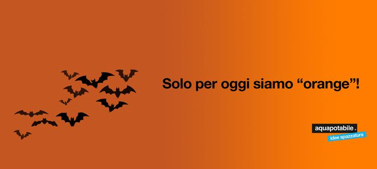 we're orange only for a day. Halloween 2014 aquapotabile.com