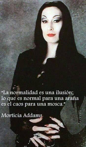 """"""" La normalidad es una ilusión; lo que es normal para una araña es el caos para…"""