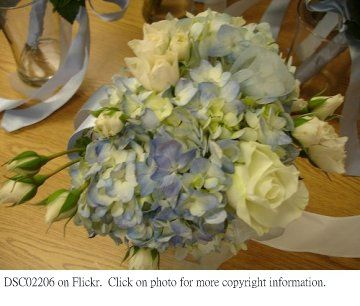 Hydrangea Bouquet Ideas are welcome!: Blue Hydrangeas Wedding, Pastel Blue, Hydrangeas Bouquets, Blue Hydrangea Wedding, Hydrangeas Wedding Bouquets, Bouquets Ideas, Blue Bouquets, Bride, Hydrangea Wedding Bouquets