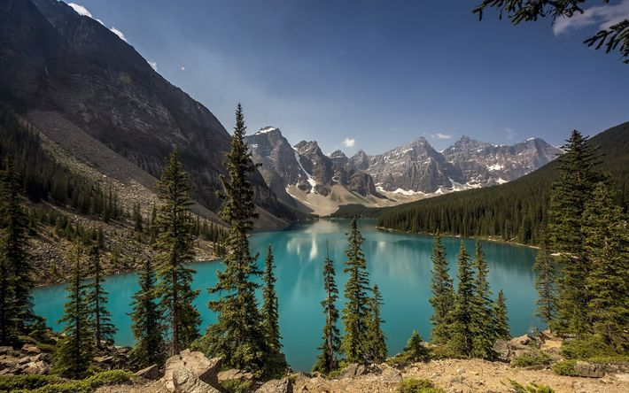 Download wallpapers Moraine lake, mountain lake, summer, forest, mountains, Alberta, Canada