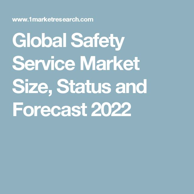 Global Safety Service Market Size, Status and Forecast 2022