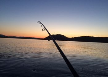 Halibut Fishing tips for gear and tips on how to fish for them