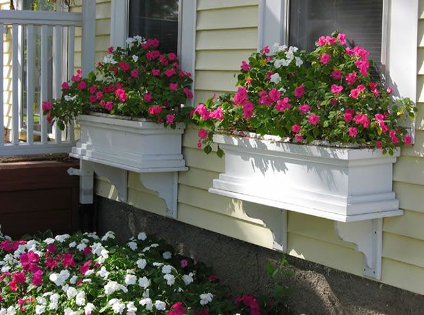 Tips para planificar las macetas para las ventanas