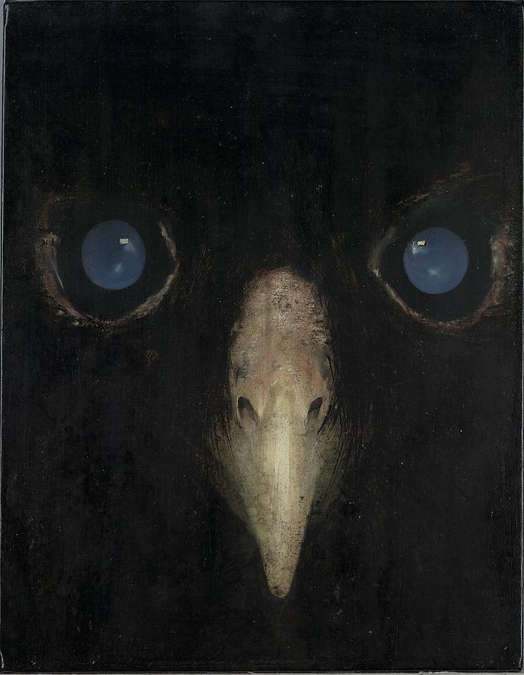 David Noonan Australian B Unled Owl From Waldhaus Oil On Canvas Cm National Gallery Of Victoria