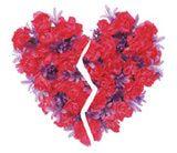 Stress Cardiomyopathy - Broken Heart Syndrome
