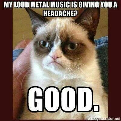 This is what I'm thinking everytime I'm riding in my because I don't care if anyone likes the music I'm listening to or not. I love my metal music!