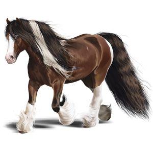 Street Cry 69*, Riding Horse Friesian Black #19870882 - Howrse