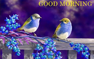 good morning my sweet sister images http://www.wishesquotez.com/2016/10/good-morning-wishes-messages-for-sister.html