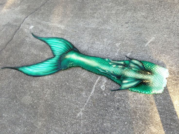 Green Mermaid Tails Galleryhipcom The Hippest Galleries