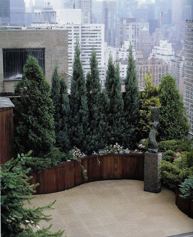 """This photo inspired me to ask my carpenter to try making planters that curve for people, what we nicknamed """"serpentine"""" planters. They aren't easy or cheap to make, but they sure do look great."""