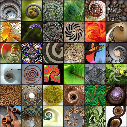I have a fascination with spirals, the beauty of them and the representation of journey.