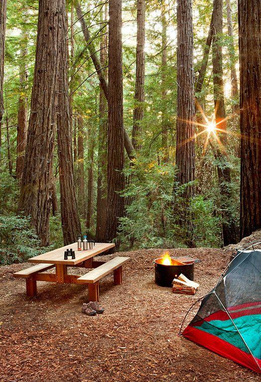 Ventana Campground, Big Sur CA