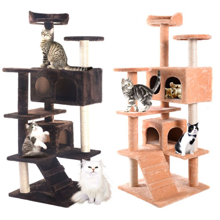 Animals Cats: Cat Tree Tower Condo Furniture Scratching Post Kitty Pet House Play Two Colors BUY IT NOW ONLY: $49.99