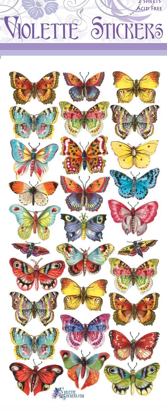 C14-Bright Butterflies