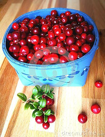 Cowberry healthy food, vitamin from the north