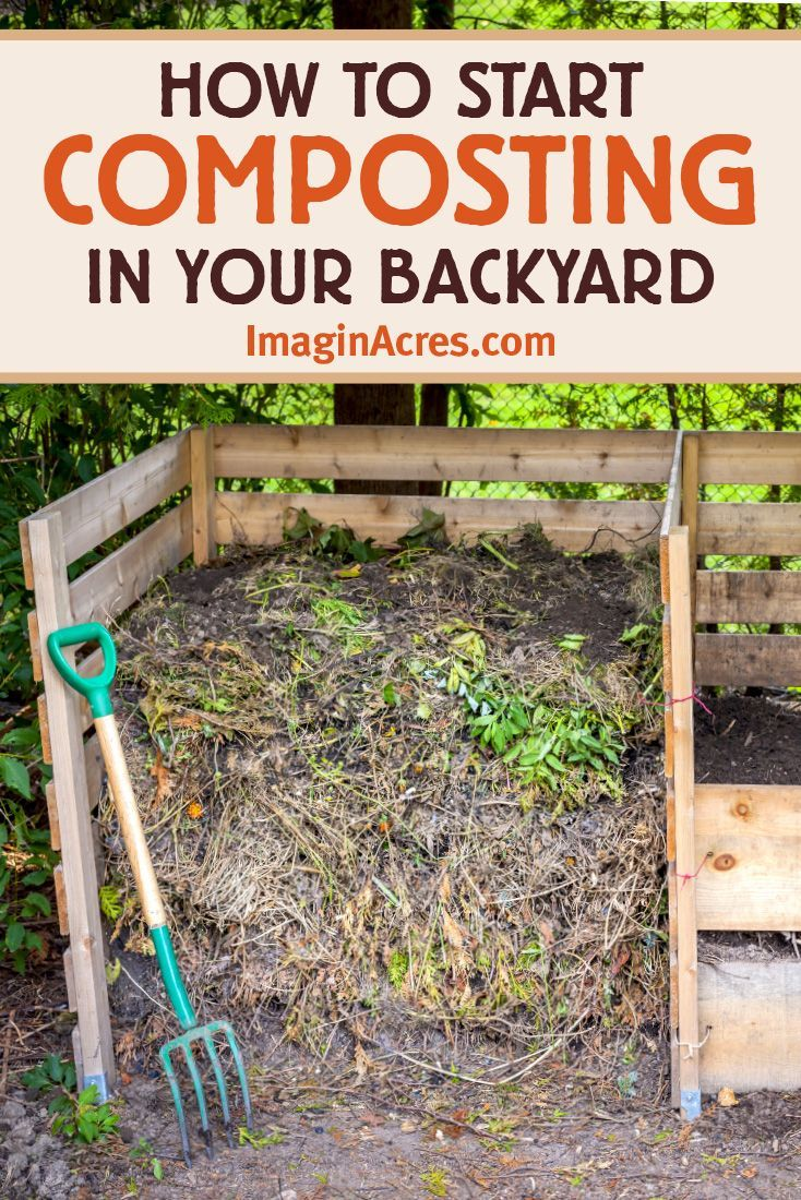 How To Start Composting In 2020 How To Start Composting Compost