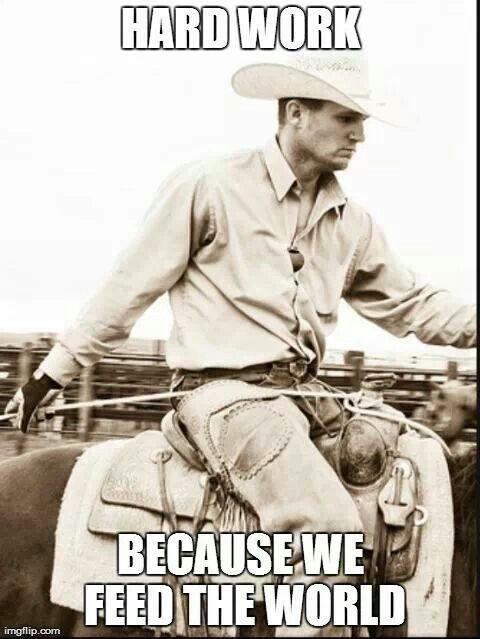 The 25 Best Cowboy Humor Ideas On Pinterest John Wayne