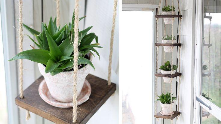 suspension verticale plante verte corde