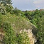 Navštivte s námi Národní přírodní památku Radouč, která byla zřízena již v roce 1977 k ochraně význačných vápníkových a teplomilných společenstev opukových skal s ojedinělým výskytem devaterky polé…