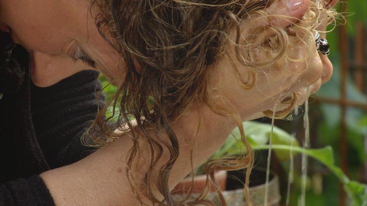 Örtschampo, kokosmjölk-inpackning och linfrö gele. För lockigt hår.// DIY - shampoo of herbs, coconut milk hair mask and a little flaxseed gel. Good for your curly hair. Translate from Swedish.  Lockigt hår har en egen vilja och uppför sig sällan så som man skulle önska. Men mycket hänger på hur man sköter sitt hår. Här är de bästa knepen.