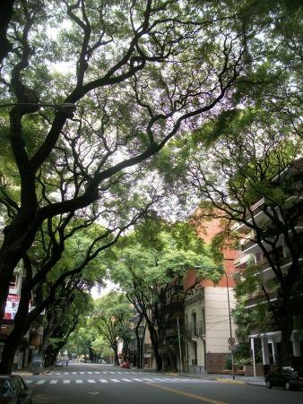 Avenida Pedro Goyena, Caballito, Buenos Aires, Argentina