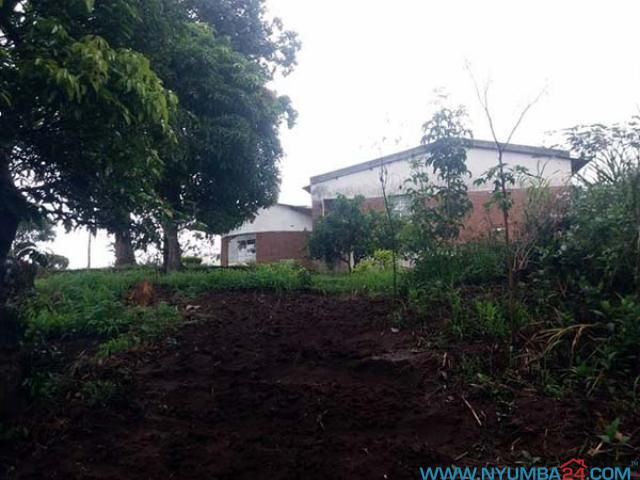 Land For Sale In Blantyre Bangwe Bangwe Malawi Houses For Rent Sale Real Estate Property In Malawi Land For Sale Renting A House Blantyre