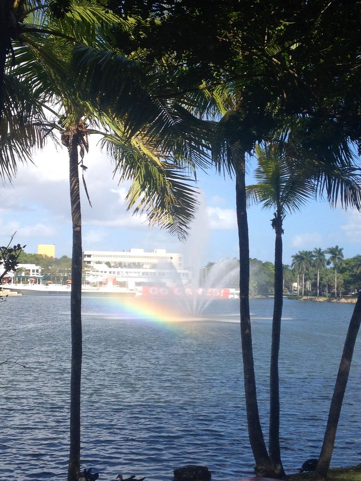 University of Miami has a  gorgeous campus; lake, sun, rainbow and palm trees.