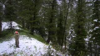Смотреть онлайн видео The Viking Chronicles. Охота на медведя в Вайоминге.
