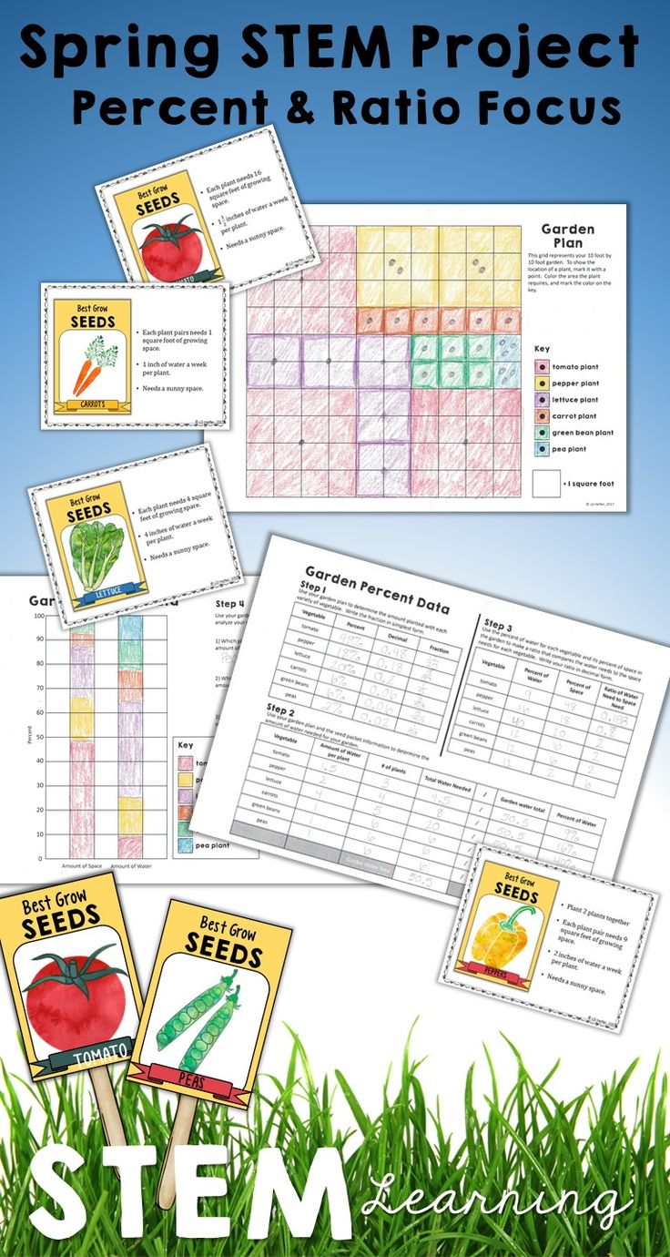 This STEM project with a math emphasis is great for middle school students to review ratios, rates, percents, and percent bar graphs! Use anytime, but especially during Spring and Easter time, this math mini project is a great way to bring some fun and real-world application into your middle school math classroom.