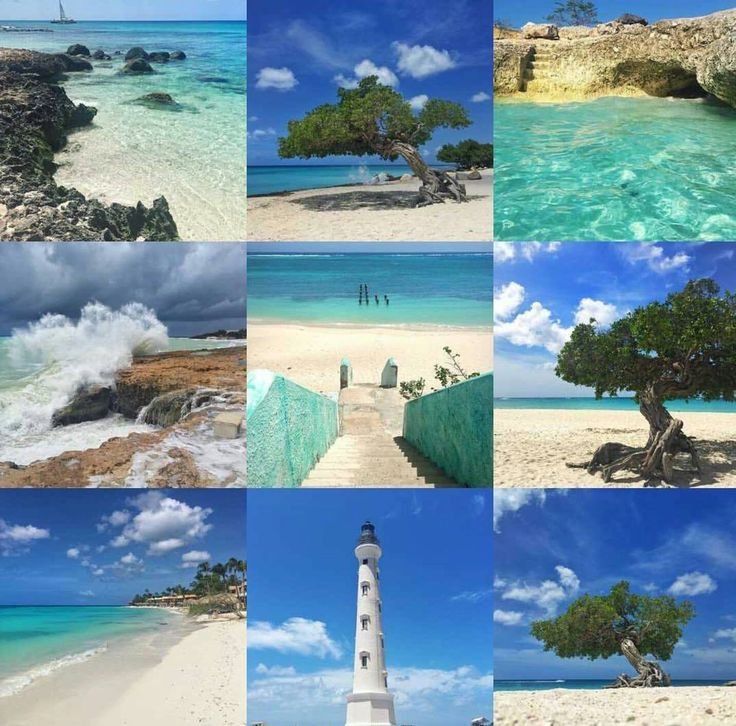 From Facebook 150 best Aruba Bonaire and