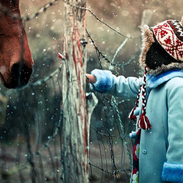 : Winter, Horses, Art, Beautiful, Wallpaper, Children, Photography, Friend, Kid