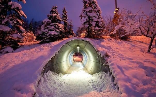Тоннель под дорогой, предназначенный для прохода диких животных. Финляндия