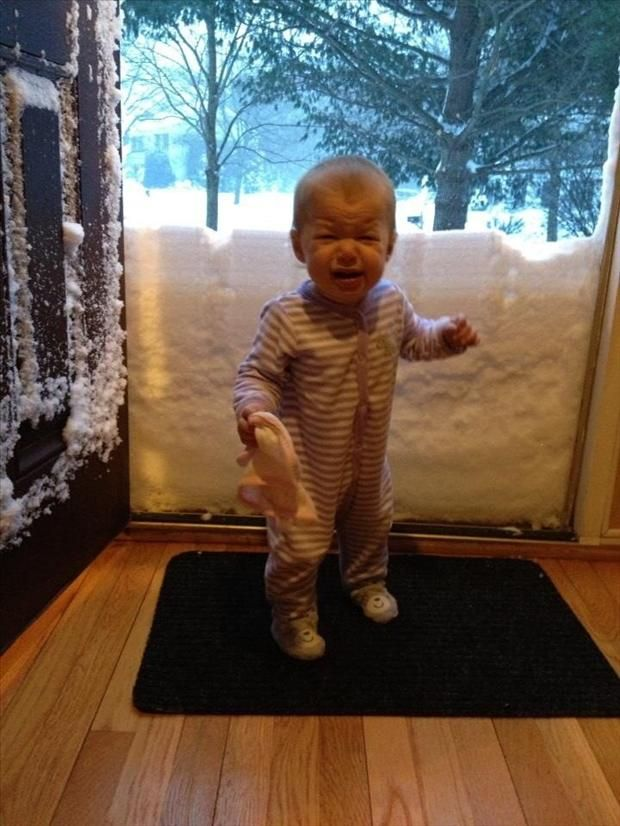 funny snow pictures