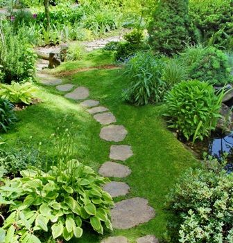25 best ideas about irish moss on pinterest moss lawn for Celtic garden designs