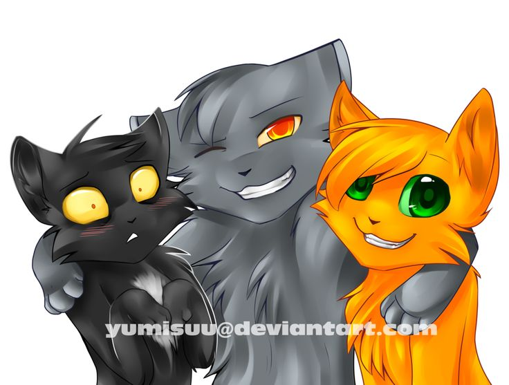 ThunderClan Homies - Ravenpaw, Graypaw and Firepaw by yumisuu on DeviantArt