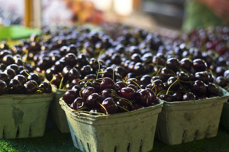 Health Benefits of Adding Black Cherry Concentrate to Your Diet
