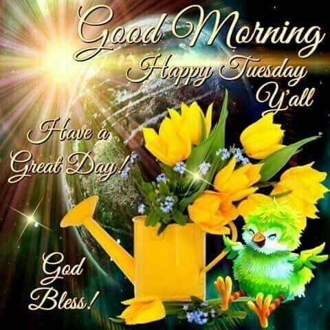 Good Morning, Happy Tuesday Yall