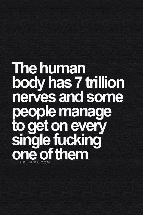 Every single one -.-