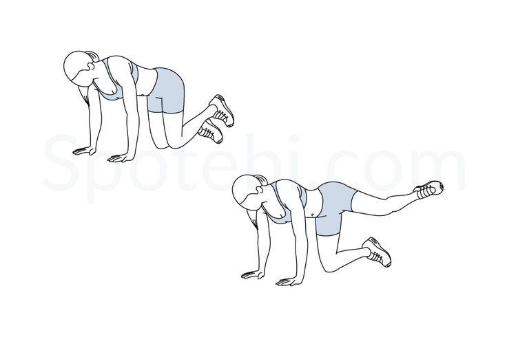 307 Besten Exercise Guide Bilder Auf Pinterest